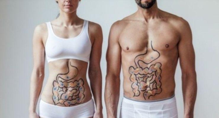 saude-intestino